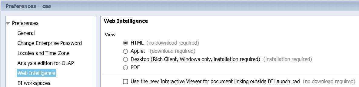 web intelligence rich client tutorial
