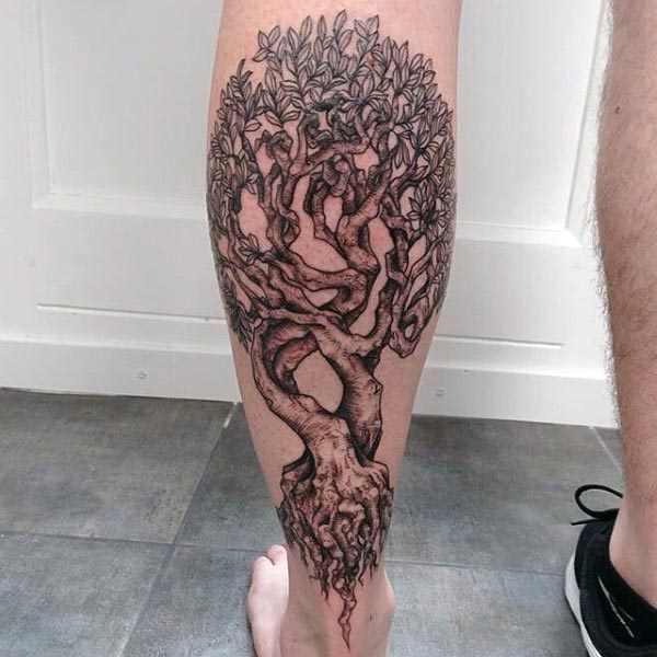 tree of life drawing tutorial